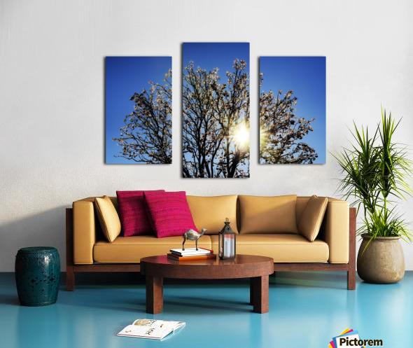 Eblouissant Canvas print