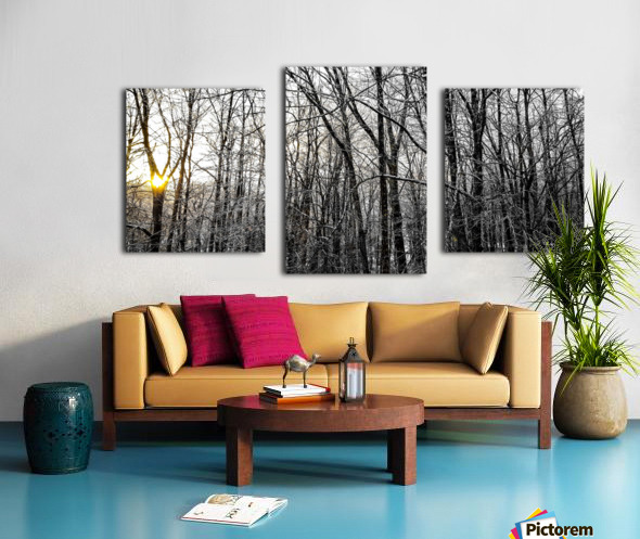 Through the Icy Trees Canvas print
