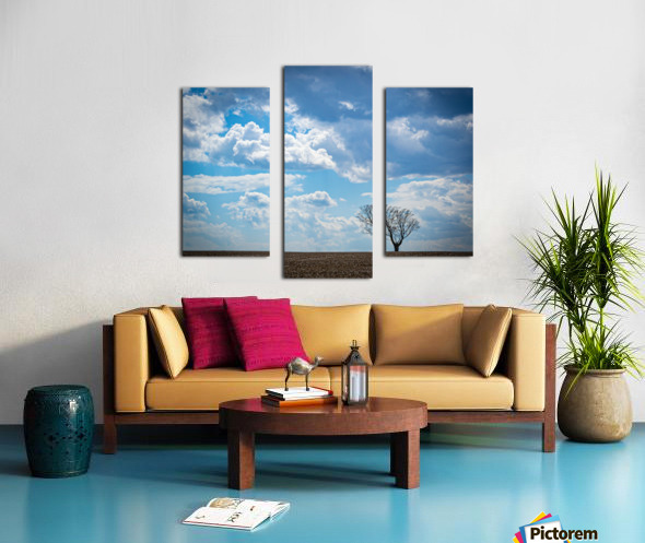 Alone With My Thoughts Canvas print