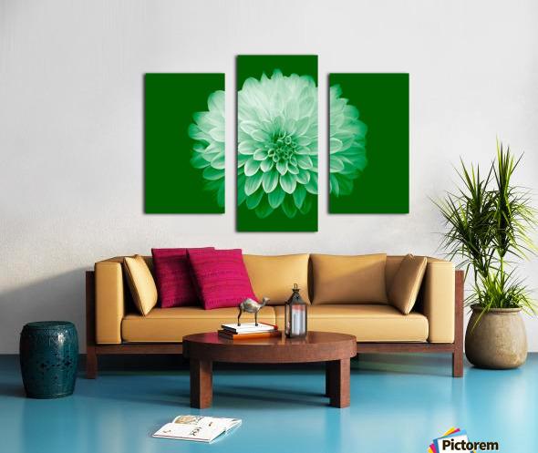 Dahlia on Green Canvas print