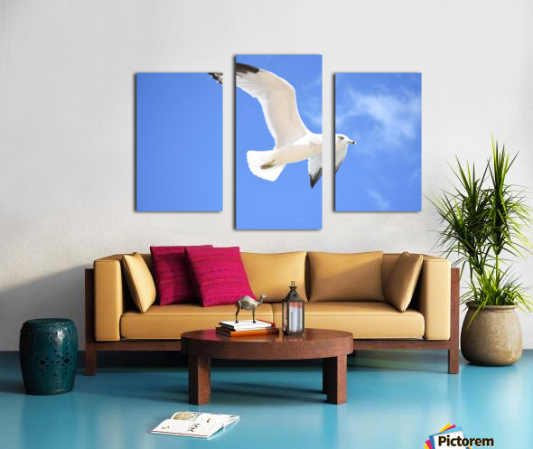 Seagull Overhead Canvas print