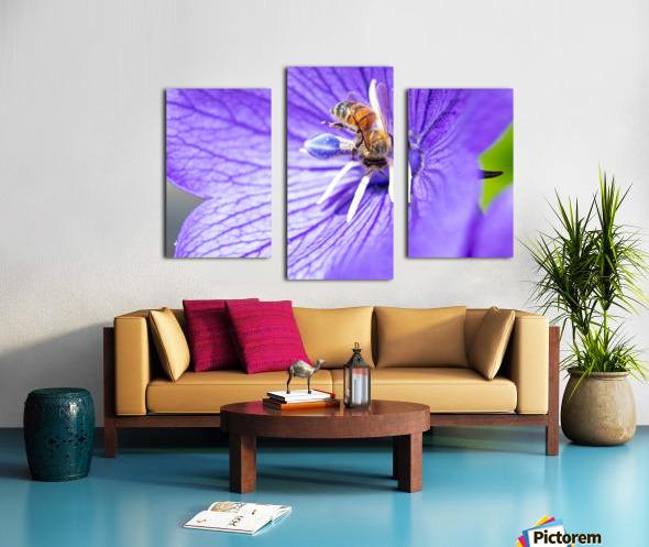 Pollinating Bee Canvas print