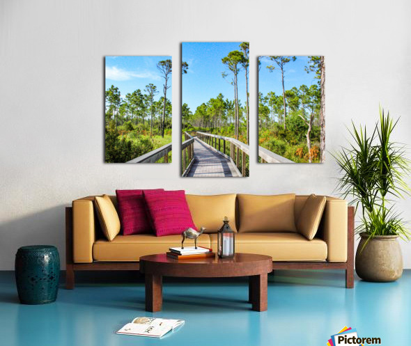 Bridge Walk Canvas print