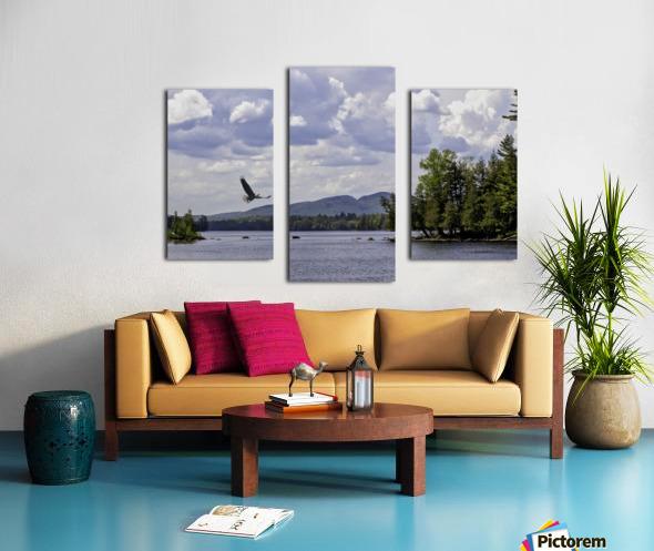 Eagle on Lake Canvas print