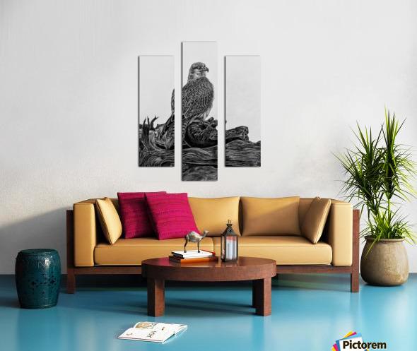 Gyrfalcon Canvas print