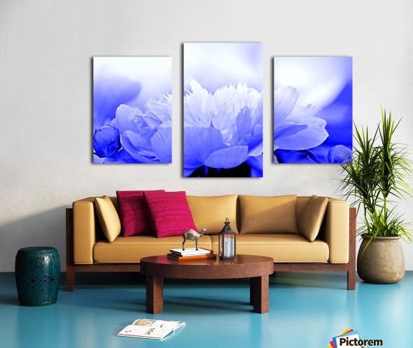 Heavenly Peony Blue Canvas print