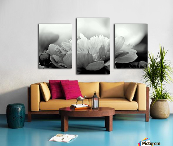 Heavenly Peony Black and White Canvas print
