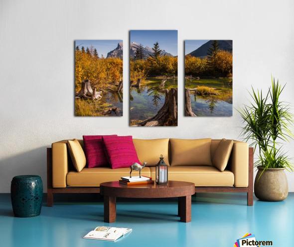 Vermilion Lakes Pond IMG_7045  Canvas print