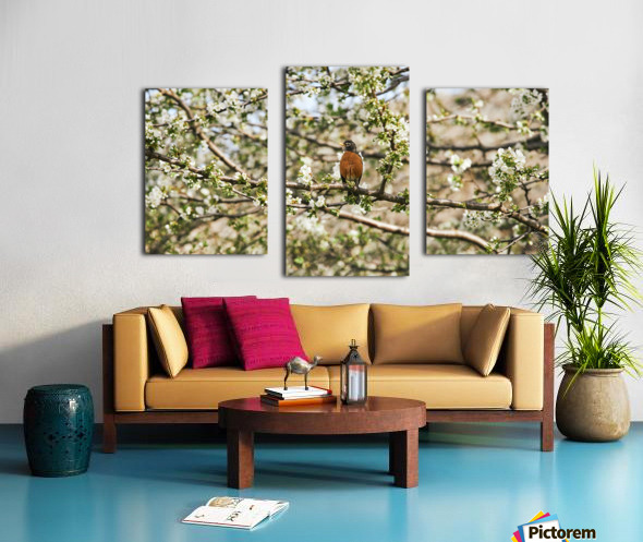 Robin Sitting on Branch Canvas print