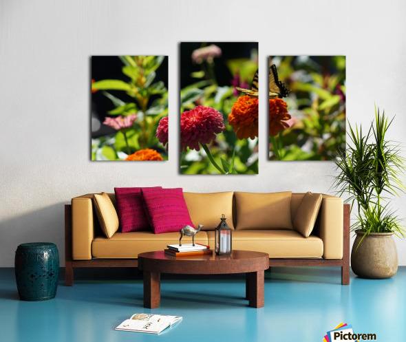 Gorgeous Flower Color Canvas print
