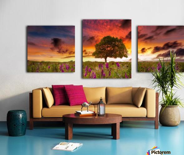 Foxgloves at sunset Canvas print