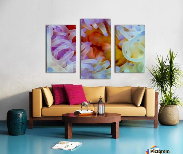 Sea Anemone 5 Canvas print