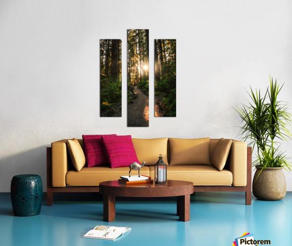 Wayfinder Canvas print