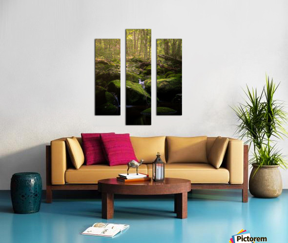 From afar what holds you near Canvas print