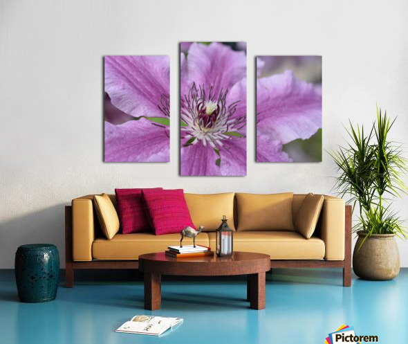 Pink Floral Photograph Canvas print