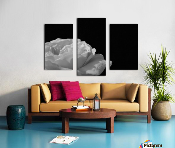 Still Canvas print