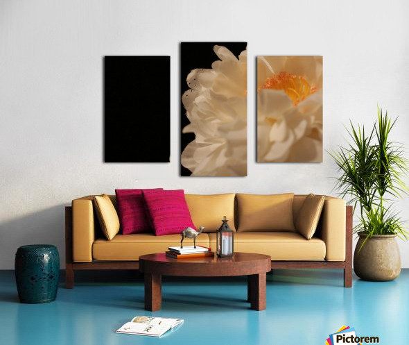 Anther Canvas print