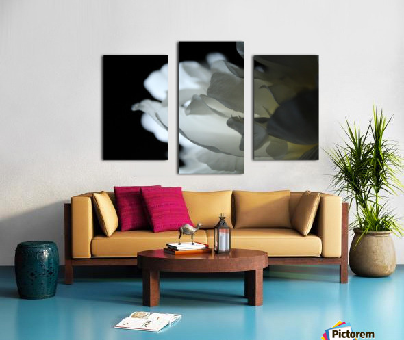 Closer Canvas print