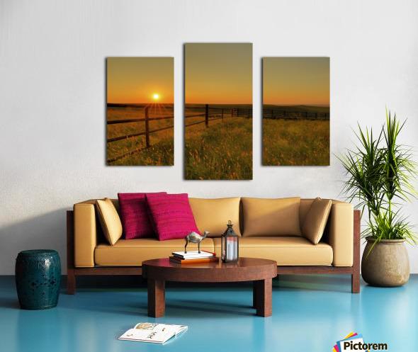 Cattle Pens Morning Sunburst Canvas print