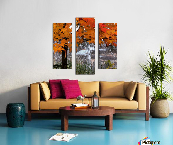 Autumn at Lake Superior Canvas print