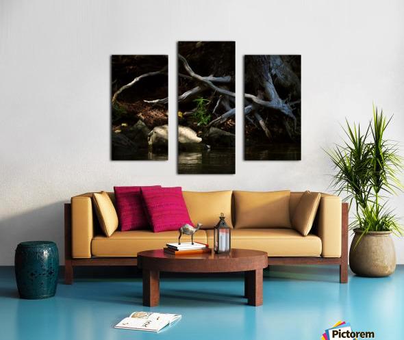 1000 islands Canvas print