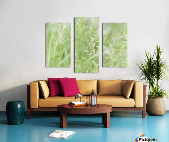 Herbe haute Canvas print