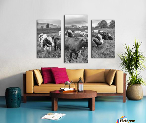 Cow Herd up Close Canvas print
