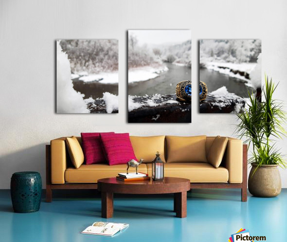 One for the Ring-- Winter Canvas print