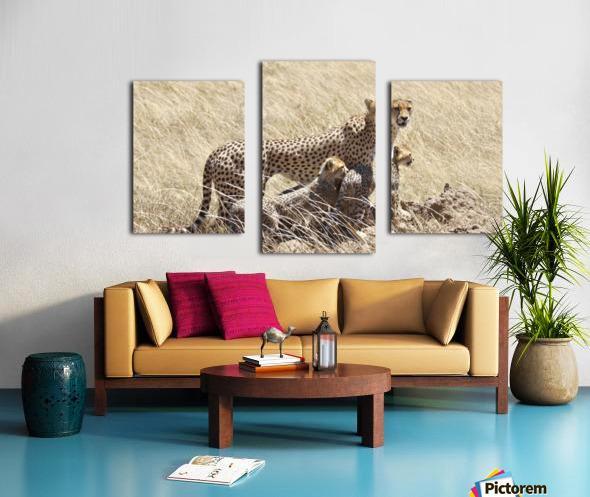 Mama Cheetah Canvas print