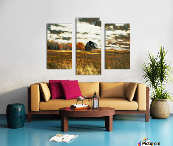 barn um lisadrewphotos Canvas print