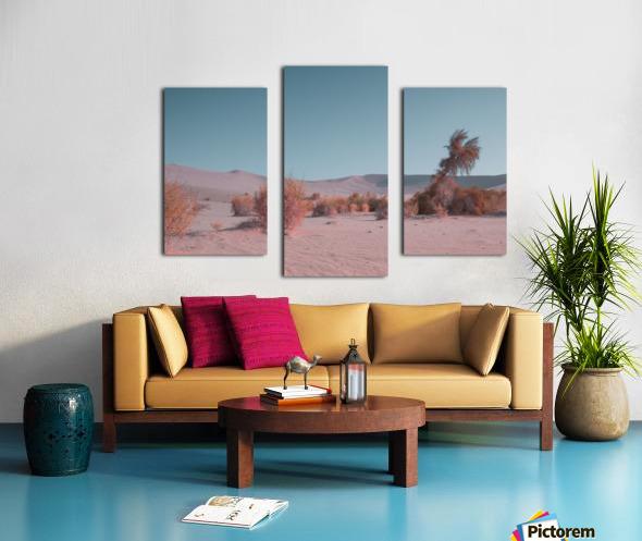 Misty Desert Canvas print