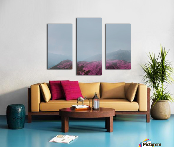 Color change Canvas print