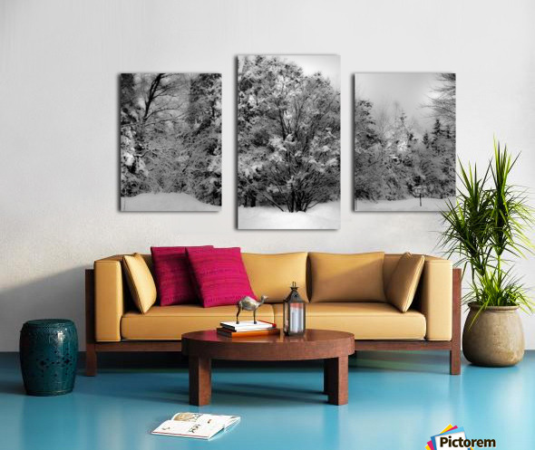 Obscure Canvas print