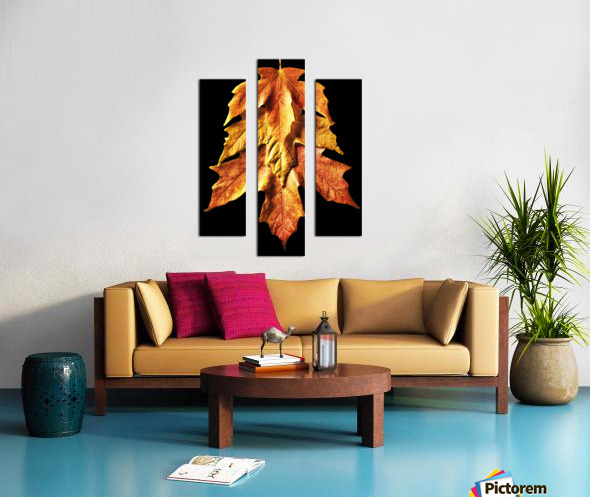 Fall Maple Leaves 1 Canvas print