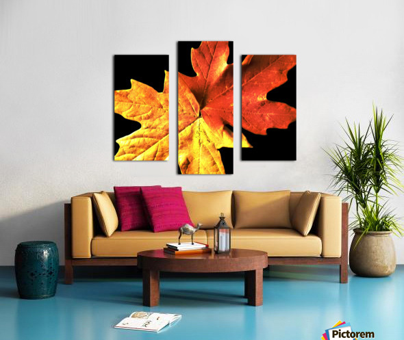 Fall Maple Leaves 3 Canvas print