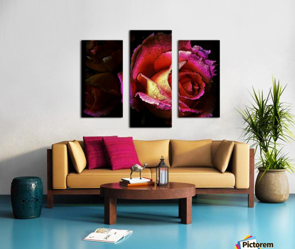 Textured Rose Canvas print