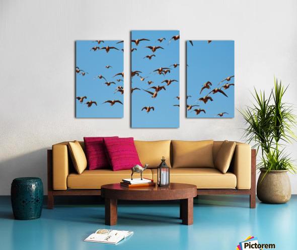 AdriaanPrinsloo 4488 Canvas print