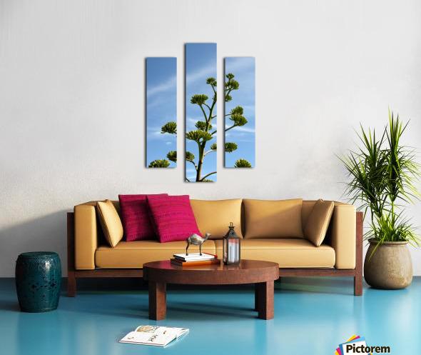 Cacti Mundo 01 Canvas print