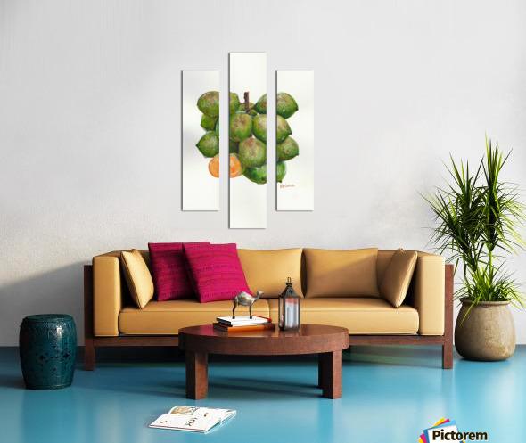 Spanish Lime Canvas print