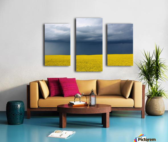 Summer Canola Canvas print