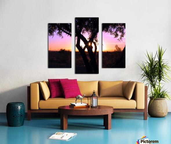 Tamarisk Sunset Canvas print