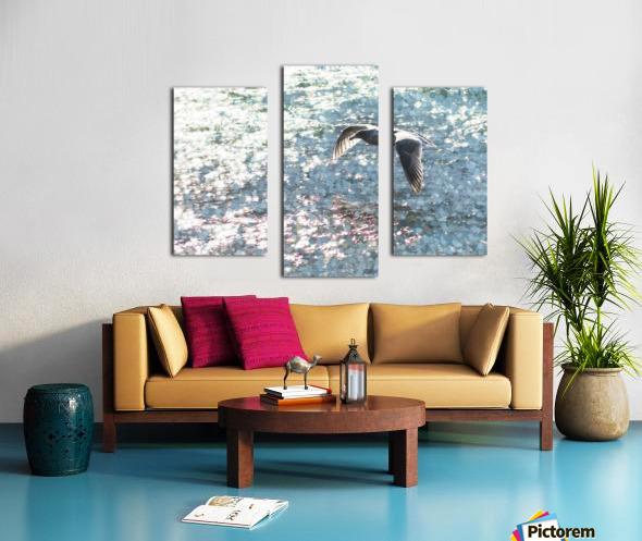 Sparkling Gull  Canvas print