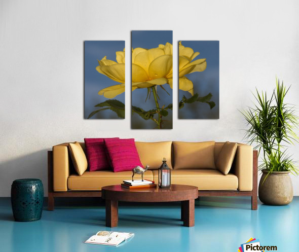 Yellow Rose Landscape Canvas print