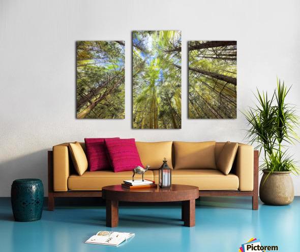 Forest Particles Canvas print