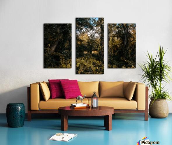 Monet style 1 Canvas print