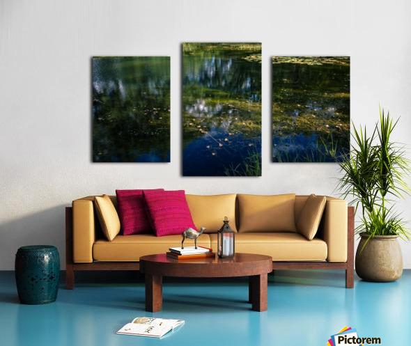 Monet style 3 Canvas print