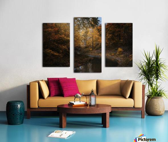 Lumiere automnale Canvas print