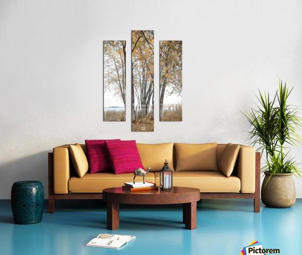 Lumiere automnale 2 Canvas print