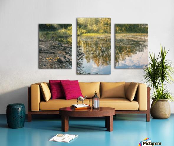 Monet style 4 Canvas print