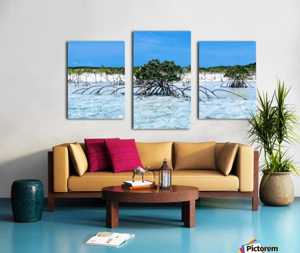Mangroves in Estuary Canvas print